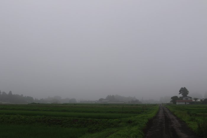 7月21日(日) AM 8:41 前橋市苗ケ島町