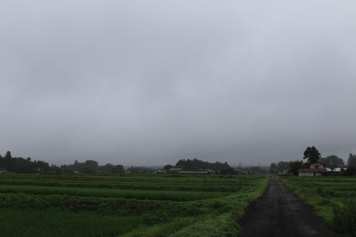 7月23日(火) AM 7:25 前橋市苗ケ島町