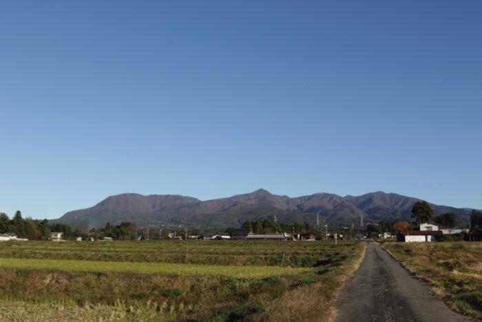 11月15日(金)  AM 7:38 前橋市苗ケ島町