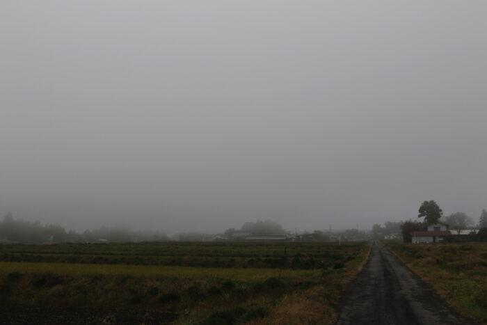 11月26日(火) AM 7:43 前橋市苗ケ島町