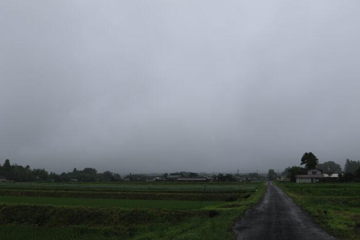 6月23日(火) AM 7:47 前橋市苗ケ島町