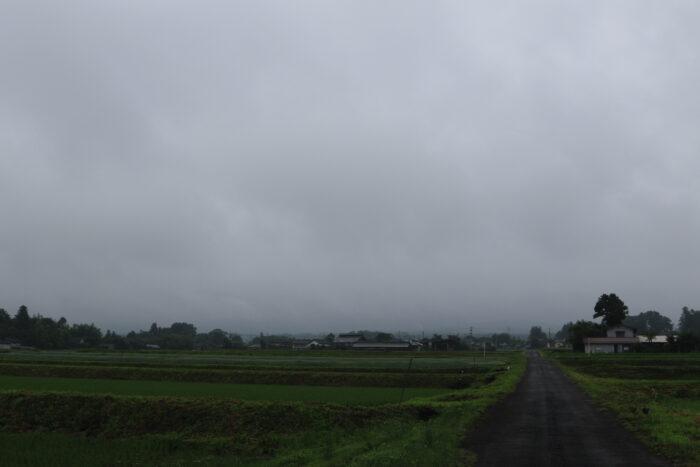 6月24日(水) AM 7:44 前橋市苗ケ島町