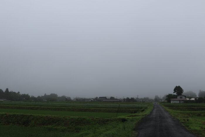 6月25日(木) AM 7:42 前橋市苗ケ島町