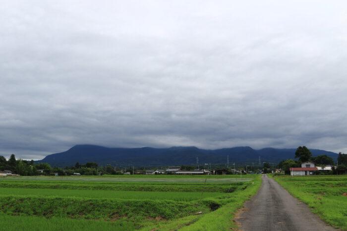 7月3日(金) AM 7:45 前橋市苗ケ島町