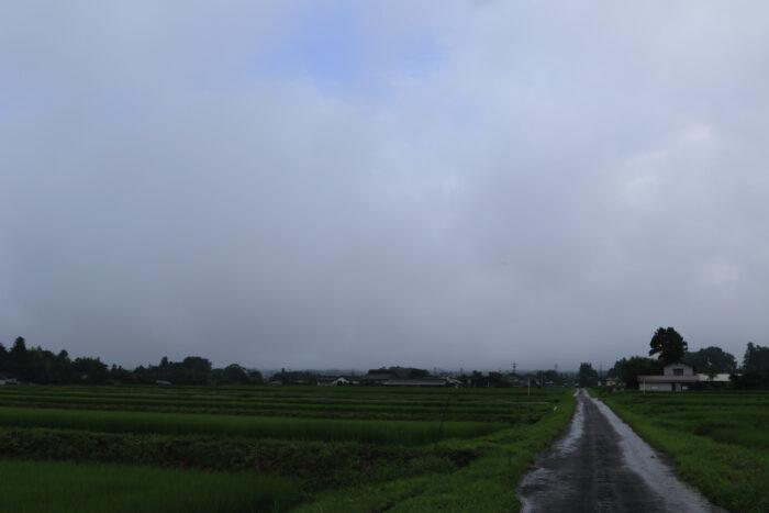7月31日(金) AM 7:38 前橋市苗ケ島町