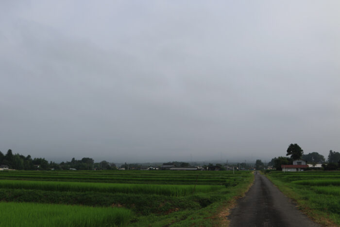 8月9日(日) AM 7:48 前橋市苗ケ島町
