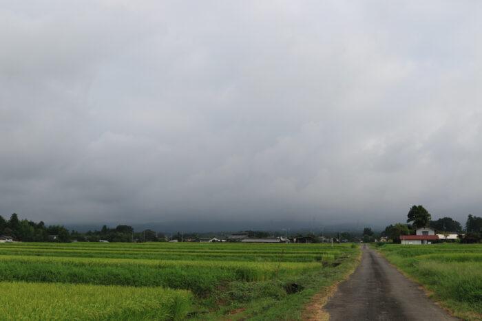 8月25日(火) AM 7:41 前橋市苗ケ島町