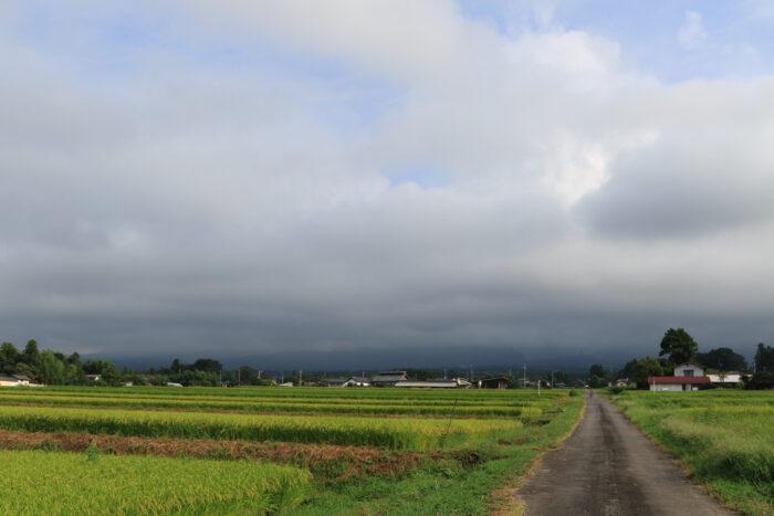 8月31日(月) AM 7:45 前橋市苗ケ島町