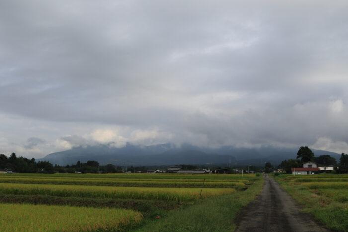 9月16日(水) AM 7:46 前橋市苗ケ島町