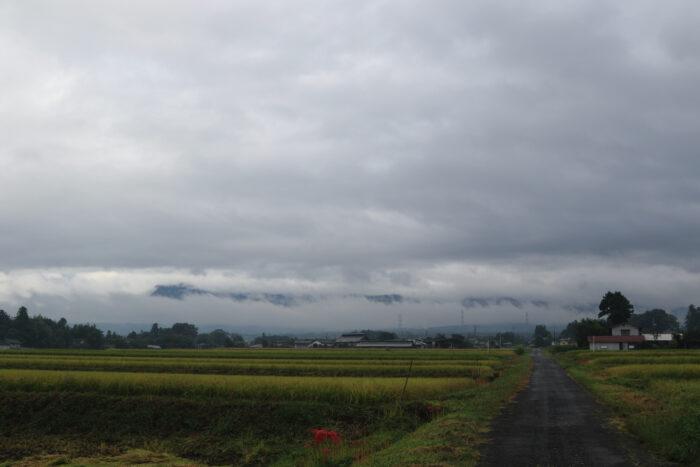 9月23日(水) AM 8:13 前橋市苗ケ島町