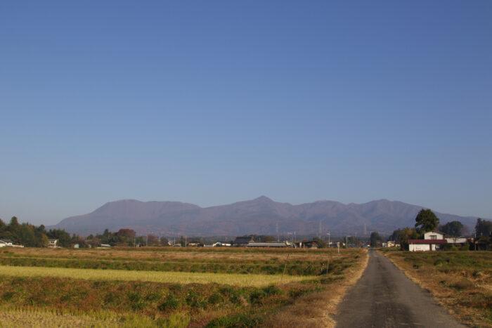 11月18日(水) AM 7:58 前橋市苗ケ島町