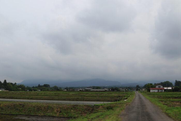 6月2日(水) AM 7:49 前橋市苗ケ島町