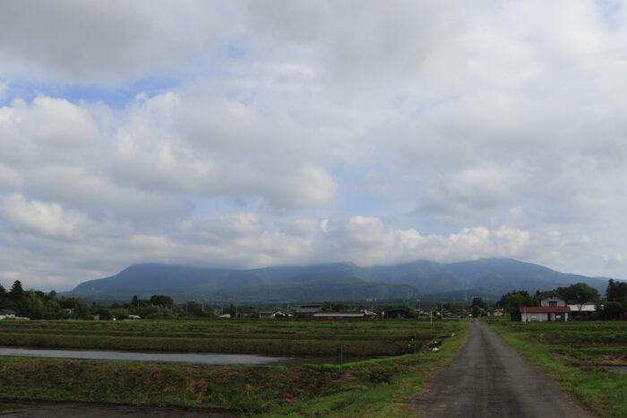 6月3日(木) AM 7:41 前橋市苗ケ島町