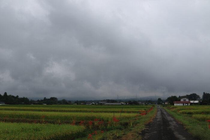 9月16日(木) AM 7:41 前橋市苗ケ島町
