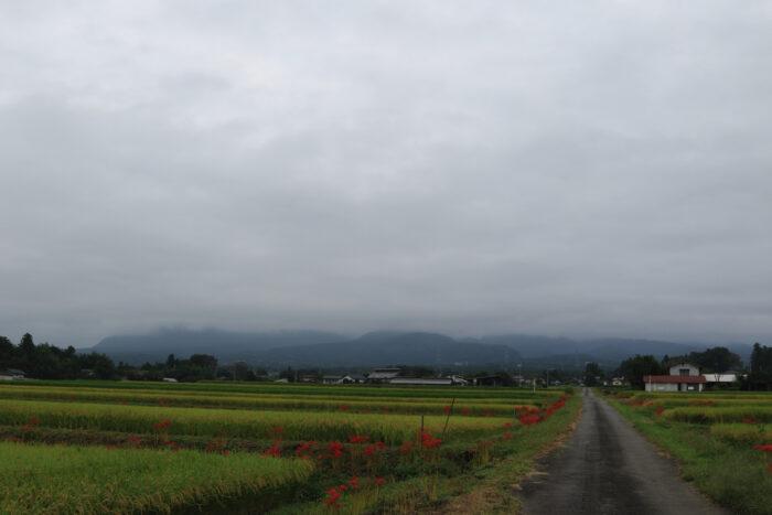 9月17日(金) AM 7:42 前橋市苗ケ島町