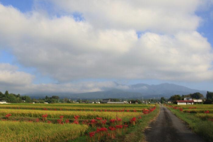 9月21日(火) AM 7:45 前橋市苗ケ島町